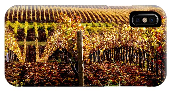 Golden Autumn Vineyard IPhone Case