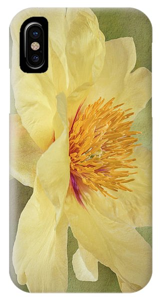 Golden Bowl Tree Peony Bloom - Profile IPhone Case