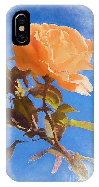IPhone Case featuring the photograph Golden Bunny by Elaine Teague
