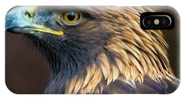 Golden Eagle 2 IPhone Case
