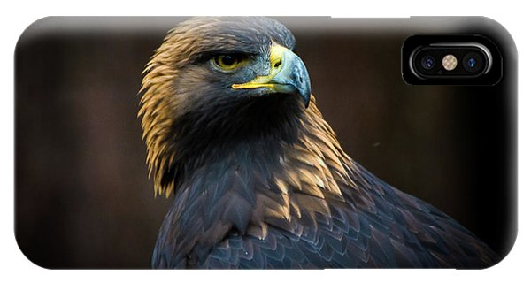 Golden Eagle 3 IPhone Case