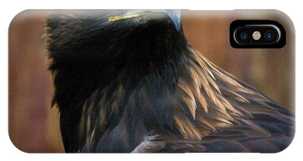 Golden Eagle 4 IPhone Case