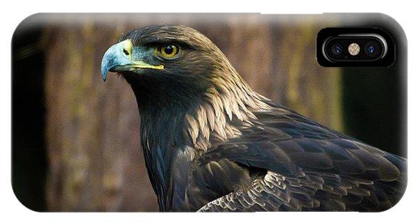 Golden Eagle 5 IPhone Case