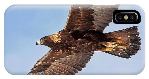 Golden Eagle Flight IPhone Case