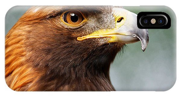 Golden Eagle Intensity IPhone Case