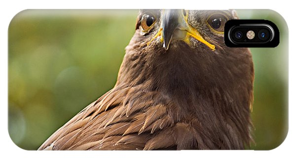 Golden Eagle Portrait Phone Case by Peter J Sucy