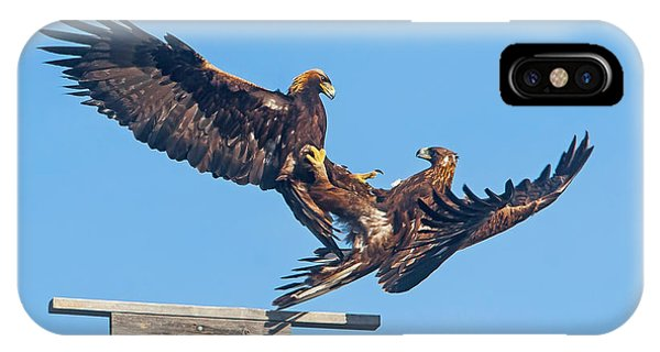 Golden Eagle Courtship IPhone Case