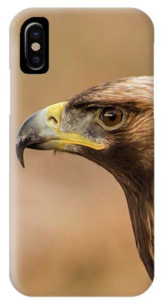 Golden Eagle's Portrait IPhone Case