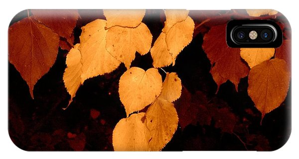 IPhone Case featuring the photograph Golden Fall Leaves by Richard Ricci