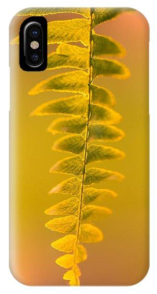 Golden Fern IPhone Case