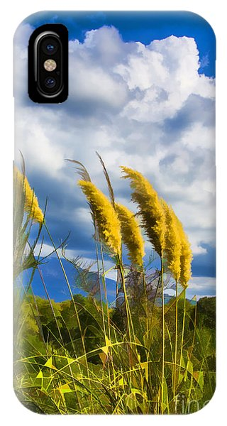 Golden Fluff IPhone Case