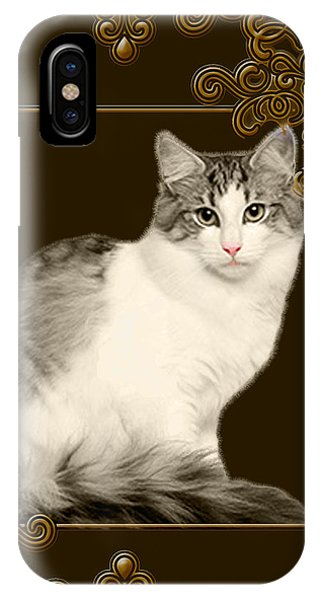 iPhone Case - Golden Girl by Cynthia Leaphart