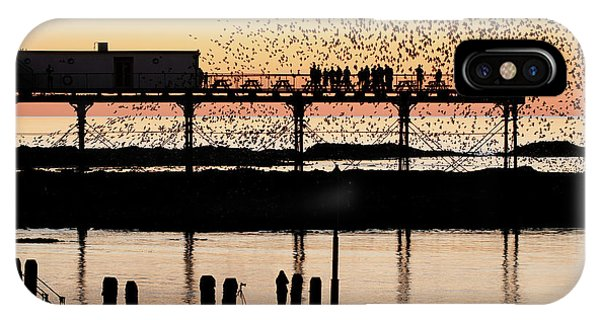Golden Hour Starlings In Aberystwyth IPhone Case
