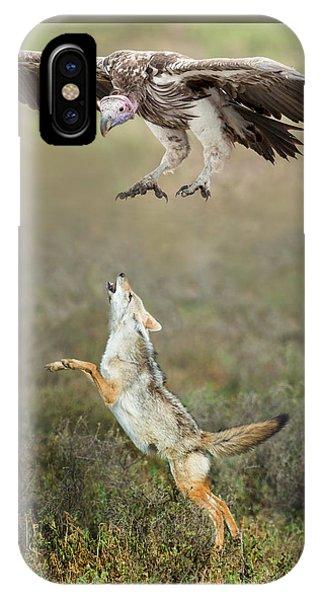 Golden Jackal, Canis Aureus, Leaping At Vulture IPhone Case