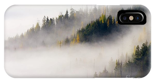 Shrouds iPhone Case - Golden Larch Morning by Mike Dawson