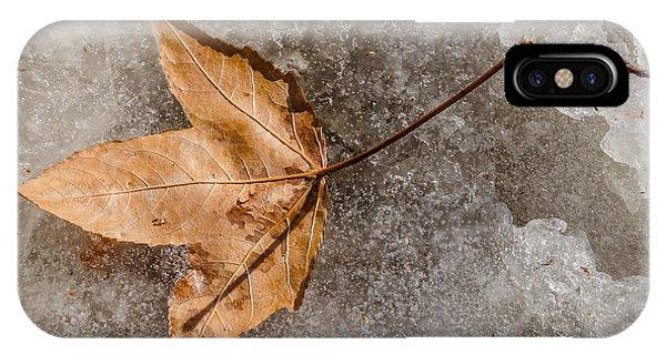 Golden Leaf IPhone Case