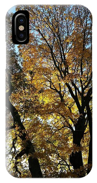 Golden Fall IPhone Case