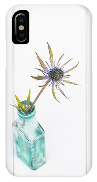 Golden Gardens iPhone Case - Golden Leaved Sea Holly by Tim Gainey