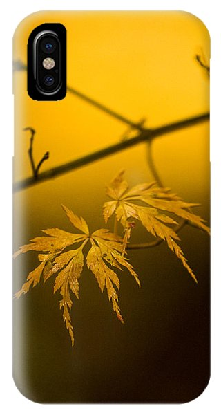 Golden iPhone Case - Golden Leaves by Mike Reid