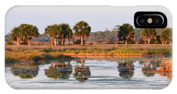 Golden Light On The St. Marks Marshes IPhone Case