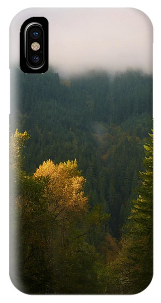 IPhone Case featuring the photograph Golden Light by Priya Ghose