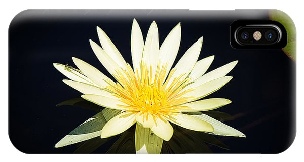 Golden Lily IPhone Case