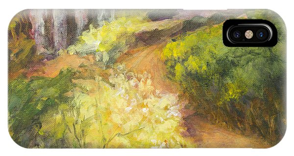 Golden Pathway IPhone Case