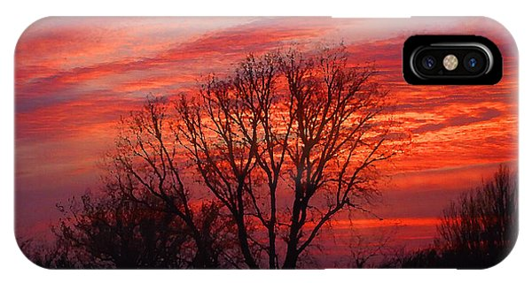 Golden Pink Sunset With Trees IPhone Case