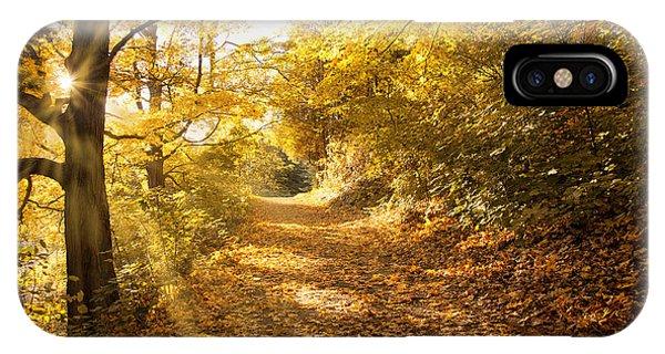 Golden Rays Of Autumn IPhone Case