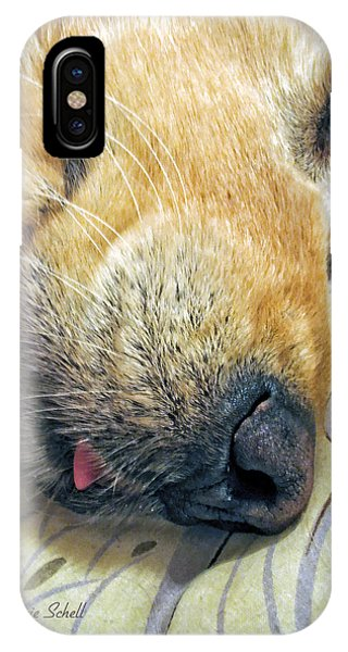 Golden Retriever Dog Little Tongue IPhone Case