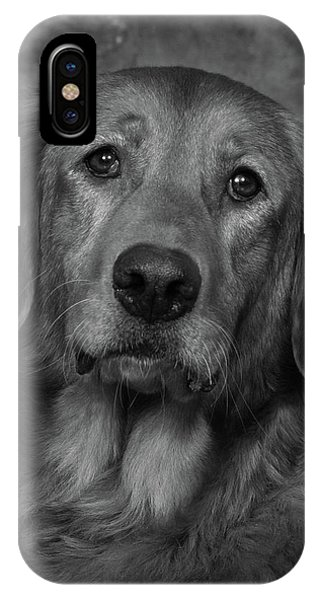 Golden Retriever In Black And White IPhone Case