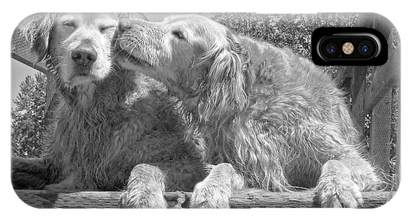 Retriever iPhone Case - Golden Retrievers The Kiss Black And White by Jennie Marie Schell