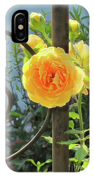 IPhone Case featuring the photograph Golden Ruffled Rose On Iron Trellis by Nancy Lee Moran