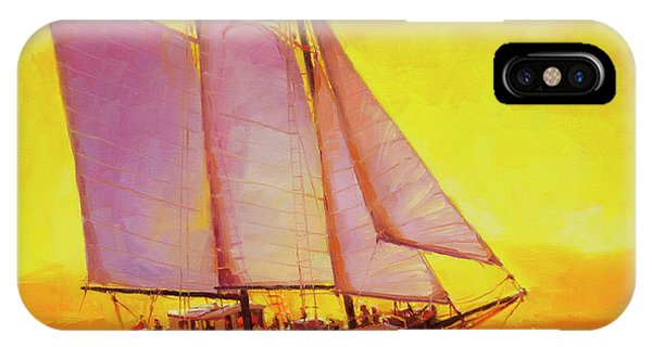 Whidbey iPhone Case - Golden Sea by Steve Henderson