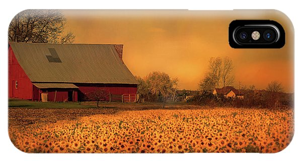 Golden Sunflower Harvest IPhone Case