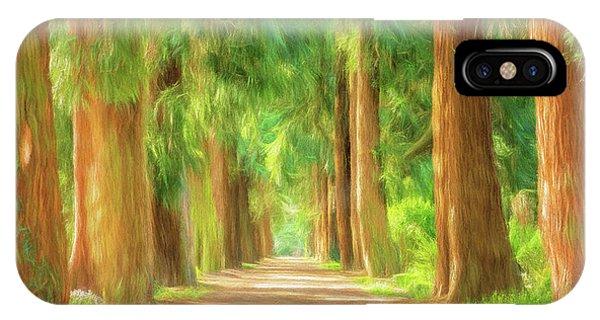 Treeline iPhone Case - Golden Tree Avenue 3 by Roy Pedersen