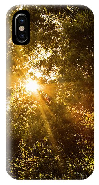 Spirituality iPhone Case - Golden Treetops by Jorgo Photography - Wall Art Gallery
