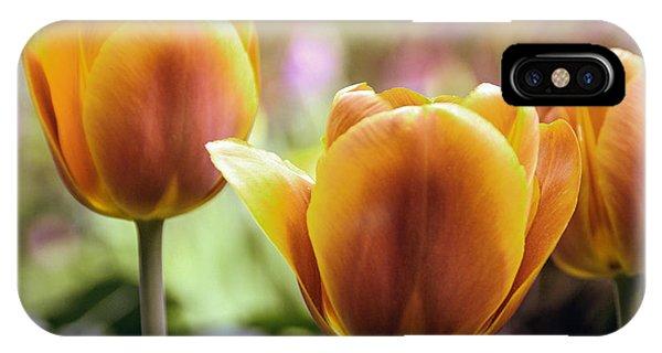 Golden Tulips IPhone Case