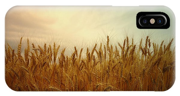 Golden Wheat IPhone Case
