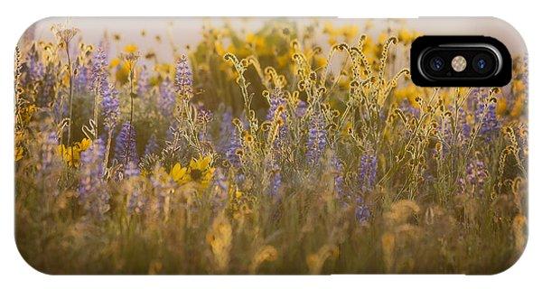 Golden Wildflowers IPhone Case