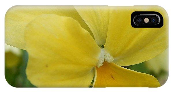 Golden Yellow Flower IPhone Case
