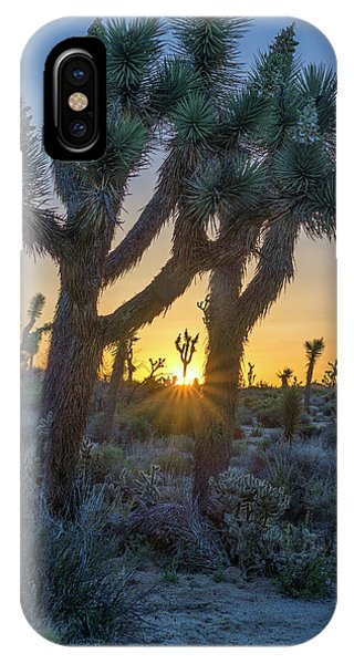 Good Morning From Joshua Tree IPhone Case