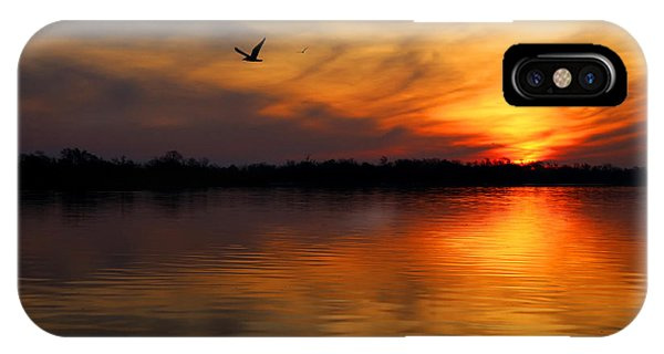 Port Orange iPhone Case - Good Morning by Judy Vincent