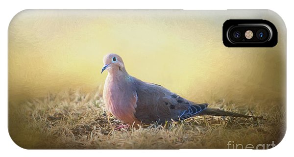 Good Mourning Dove IPhone Case