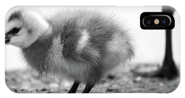 Goose Chick IPhone Case