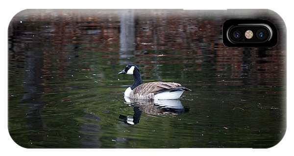 Goose On A Pond IPhone Case