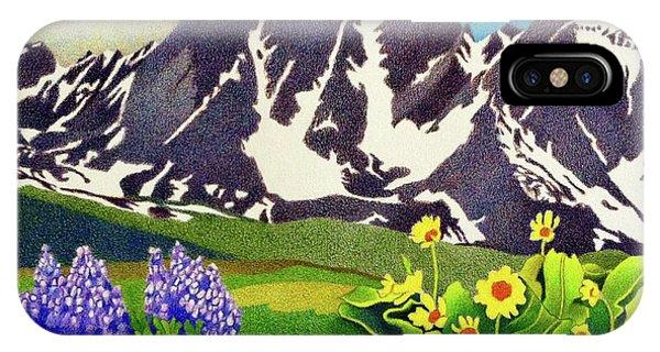 Gore Range Wildflowers IPhone Case