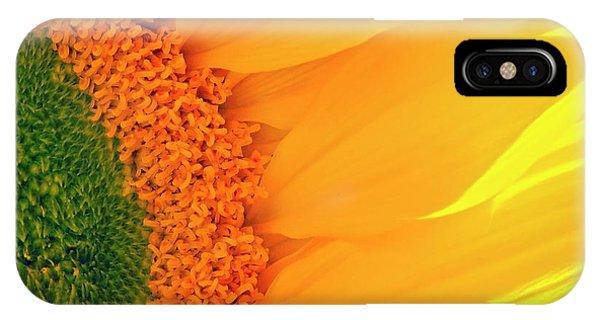 Gorgeous Sunflower Macro IPhone Case