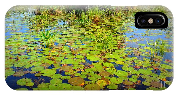 Gorham Pond Lily Pads IPhone Case