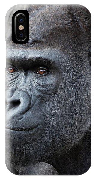 Gorillas In The Mist IPhone Case